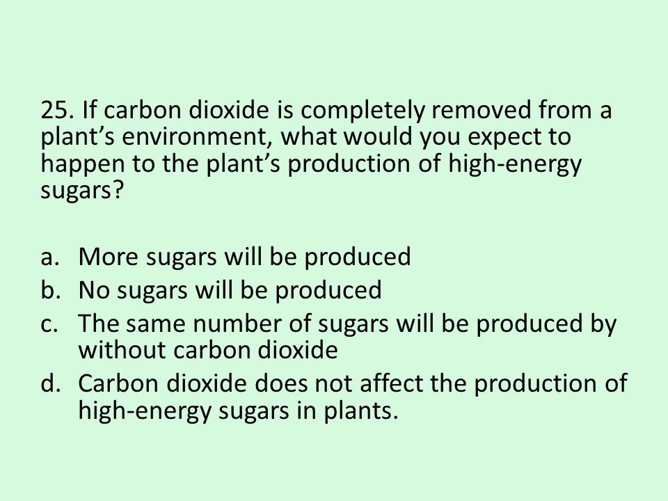 25. If carbon dioxide is completely removed from a plant's environment, what would you expect to happen to the plant's production of high-energy sugars