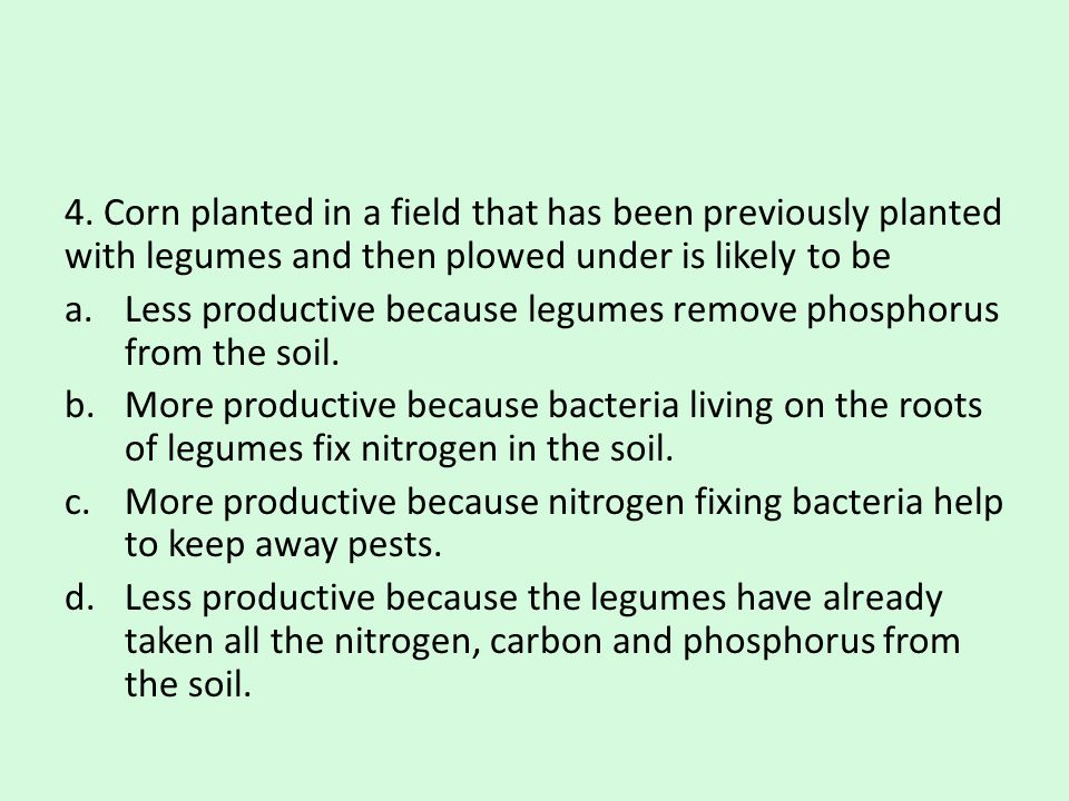 4. Corn planted in a field that has been previously planted with legumes and then plowed under is likely to be