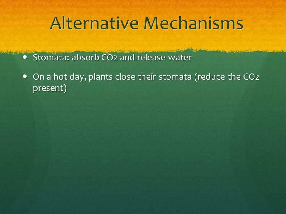 Alternative Mechanisms
