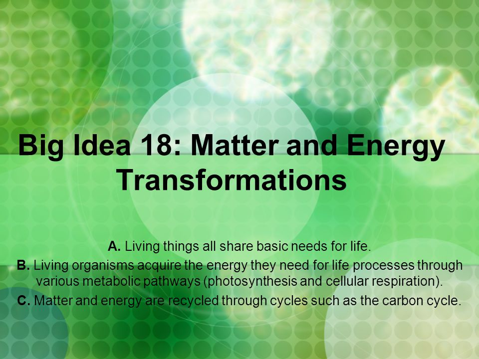 Big Idea 18: Matter and Energy Transformations