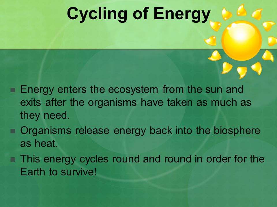 Cycling of Energy Energy enters the ecosystem from the sun and exits after the organisms have taken as much as they need.