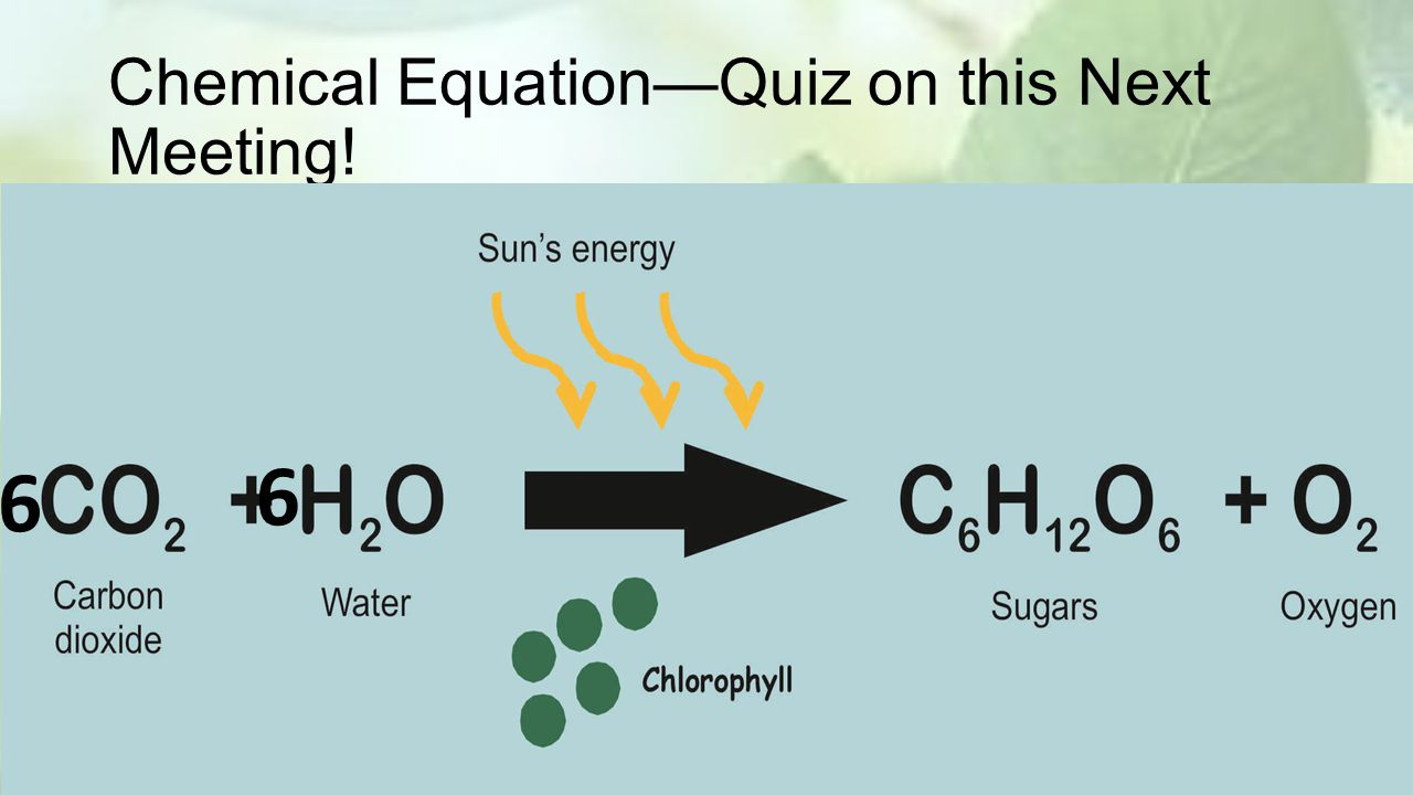 Chemical Equation—Quiz on this Next Meeting!