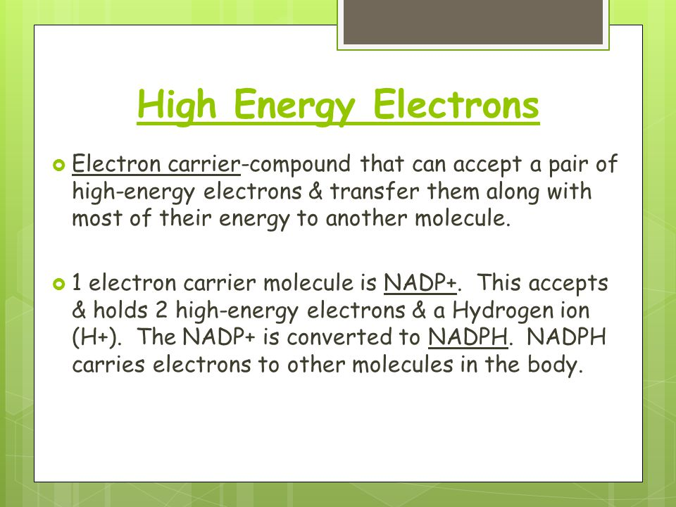 High Energy Electrons