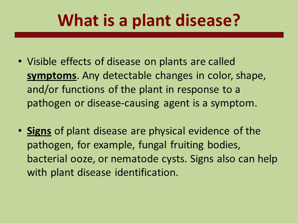 introduction to plant pathology - ppt download, Human Body