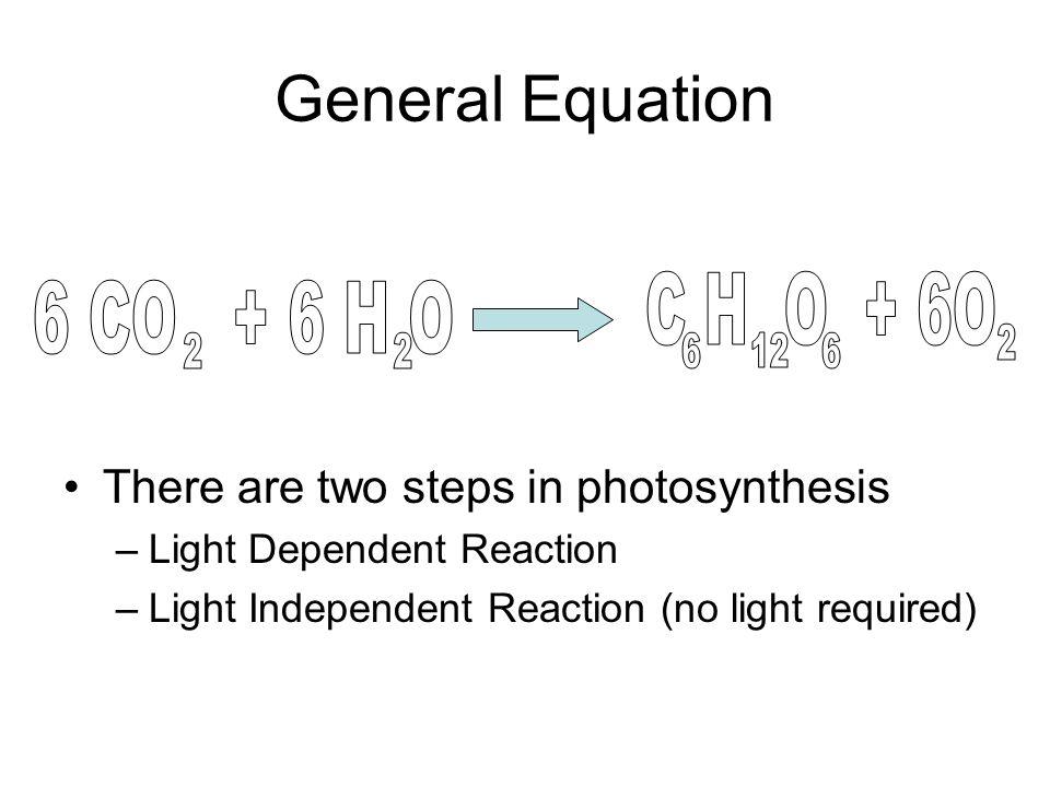 General Equation C H O + 6O 6 CO + 6 H O