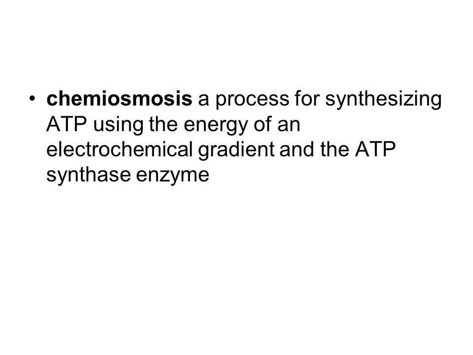chemiosmosis a process for synthesizing ATP using the energy of an electrochemical gradient and the ATP synthase enzyme