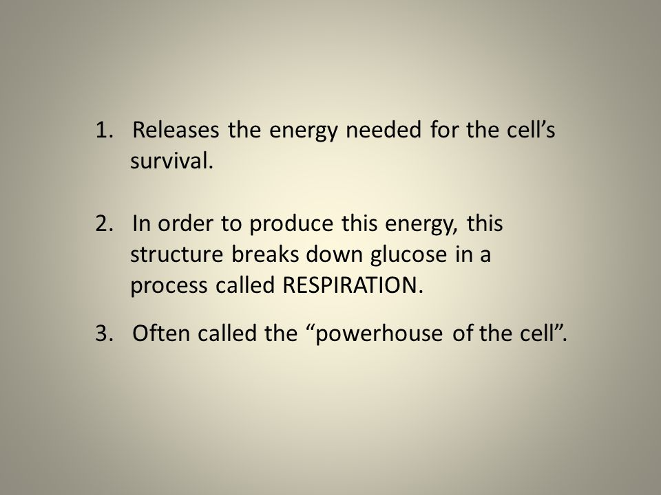 Releases the energy needed for the cell's