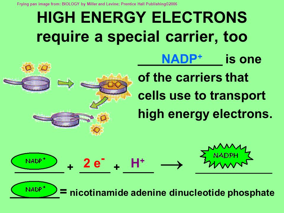 HIGH ENERGY ELECTRONS require a special carrier, too