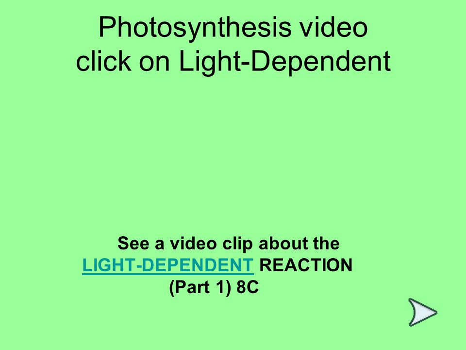 Photosynthesis video click on Light-Dependent