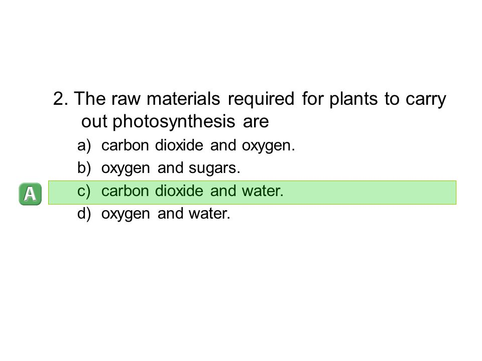 2. The raw materials required for plants to carry out photosynthesis are
