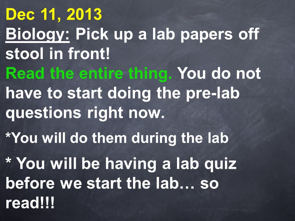 Biology: Pick up a lab papers off stool in front!