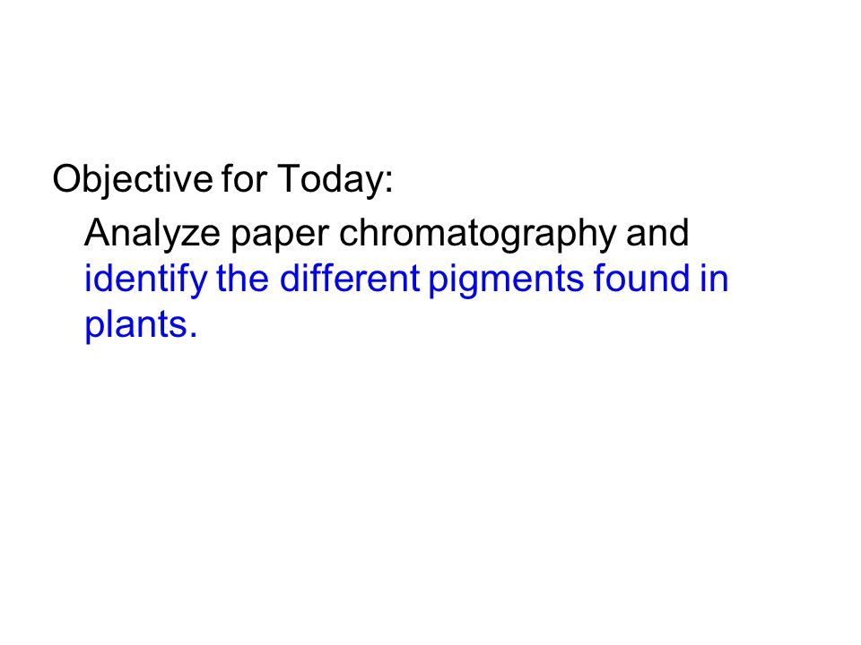 Objective for Today: Analyze paper chromatography and identify the different pigments found in plants.