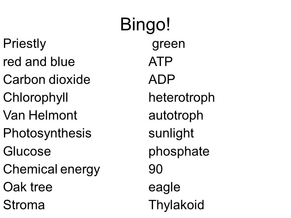 Bingo! Priestly green red and blue ATP Carbon dioxide ADP