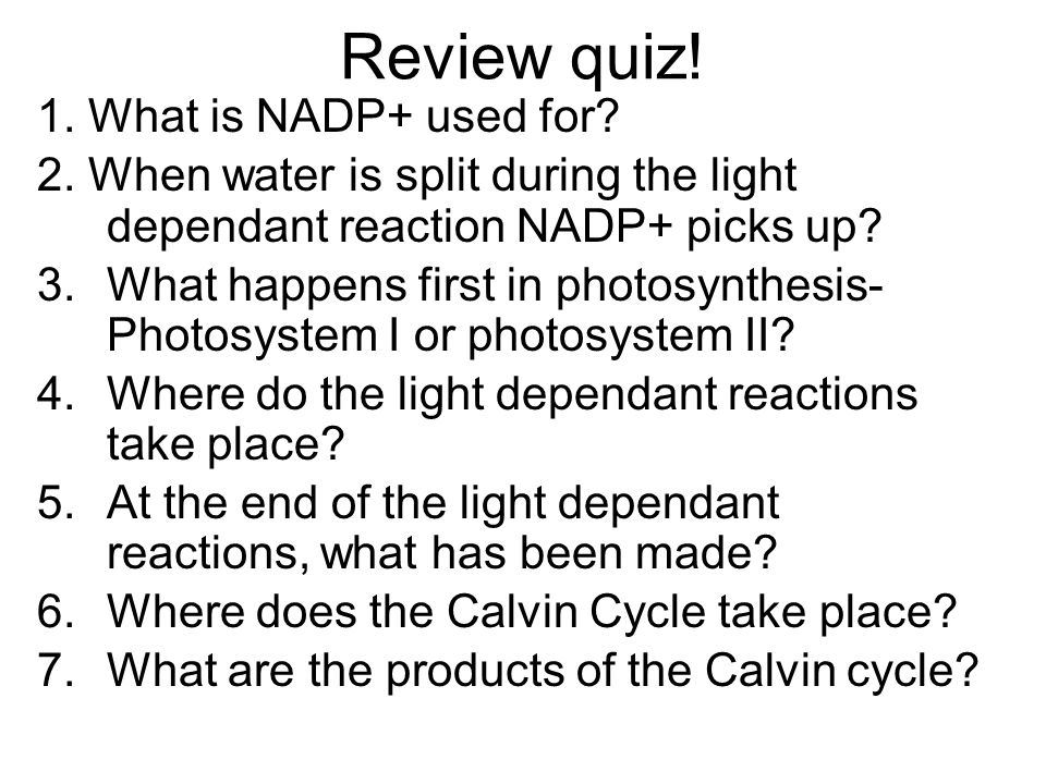 Review quiz! 1. What is NADP+ used for