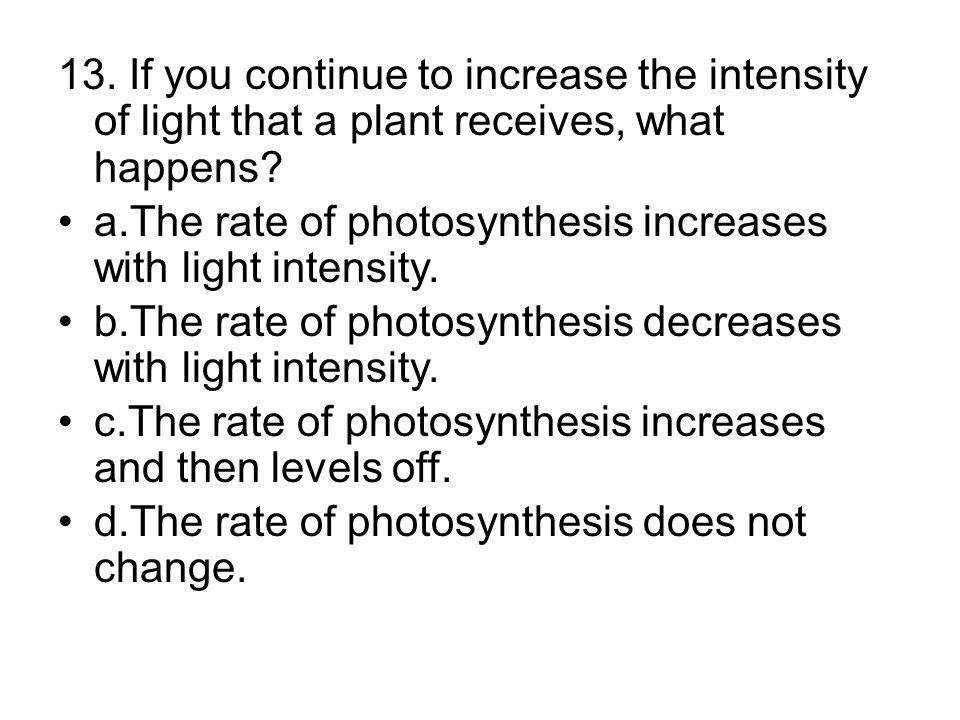 a.The rate of photosynthesis increases with light intensity.