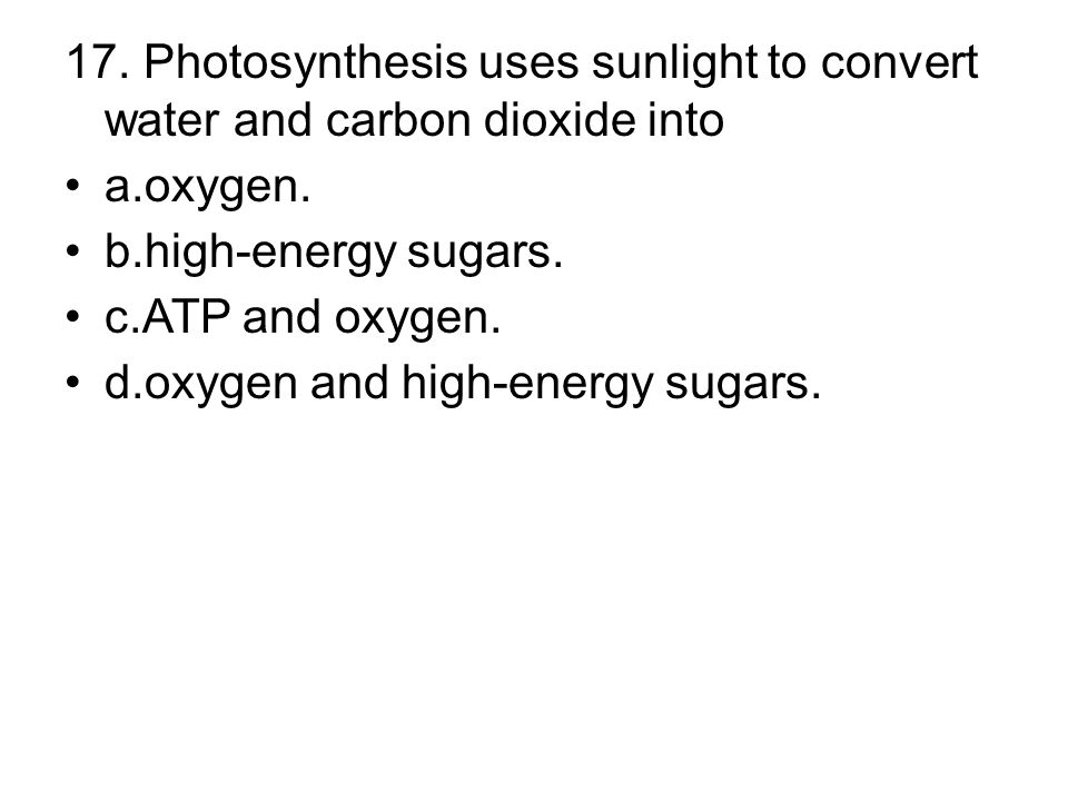 d.oxygen and high-energy sugars.