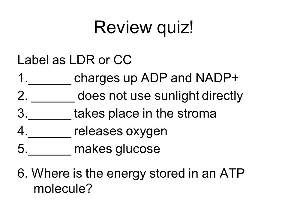 Review quiz! Label as LDR or CC 1.______ charges up ADP and NADP+