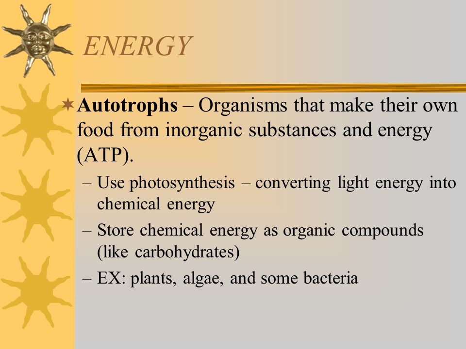 ENERGY Autotrophs – Organisms that make their own food from inorganic substances and energy (ATP).