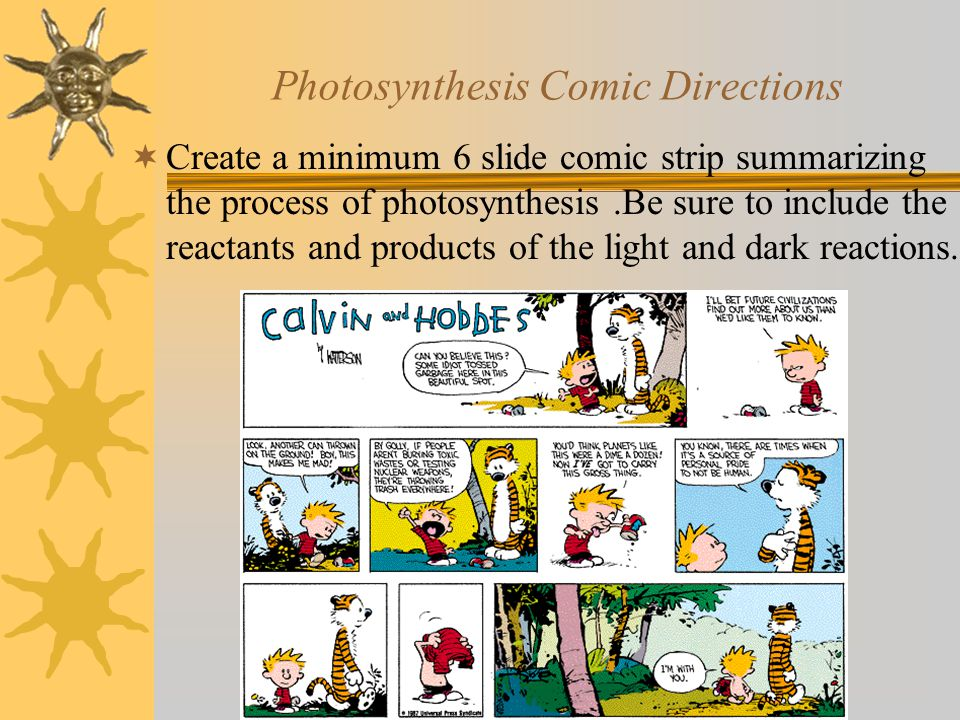 Photosynthesis Comic Directions