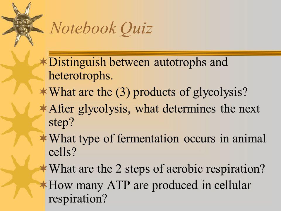 Notebook Quiz Distinguish between autotrophs and heterotrophs.