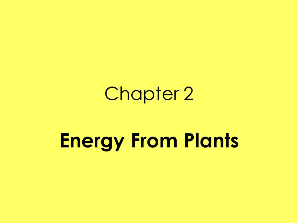 Chapter 2 Energy From Plants