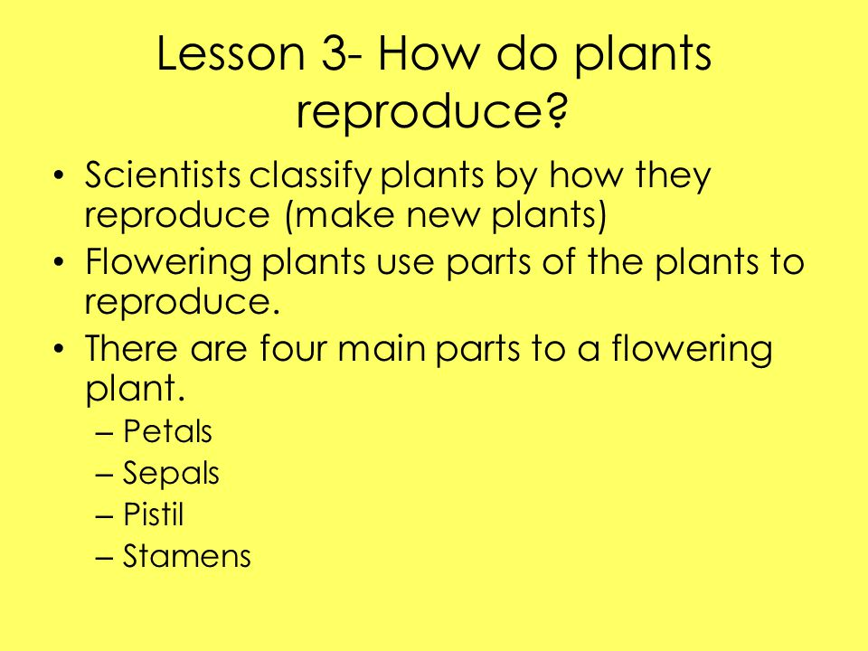Lesson 3- How do plants reproduce