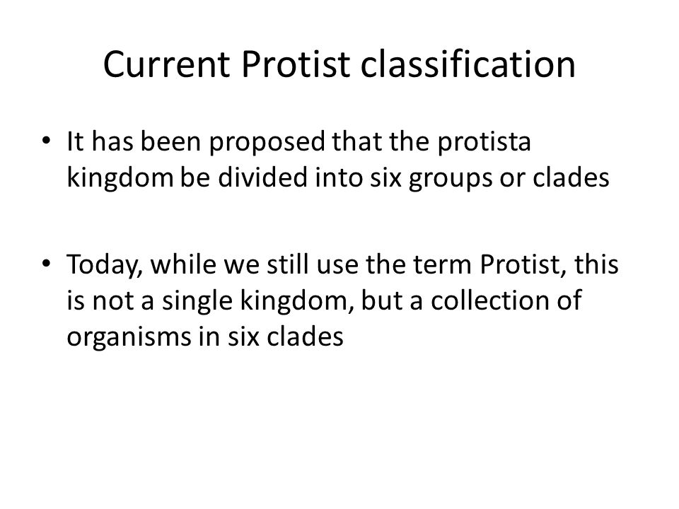 Current Protist classification