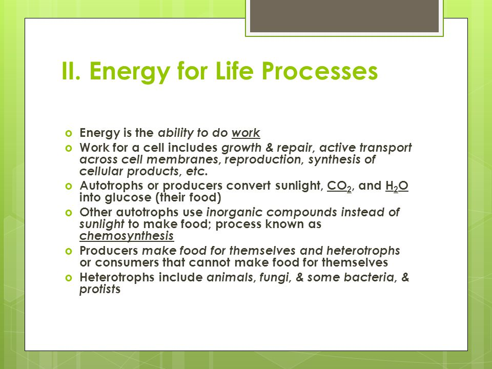 II. Energy for Life Processes