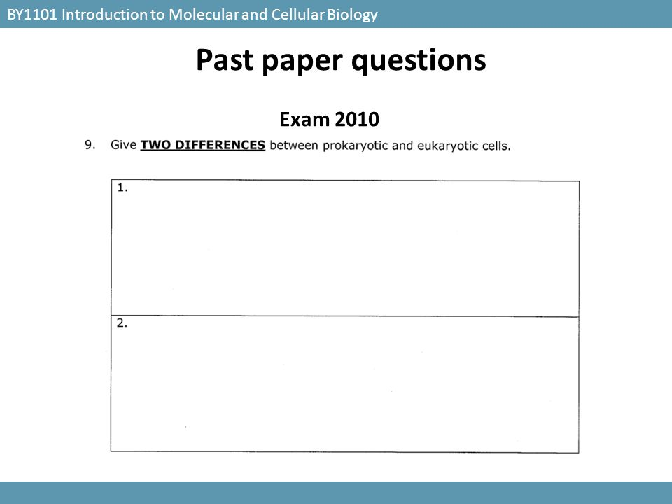 Past paper questions Exam 2010