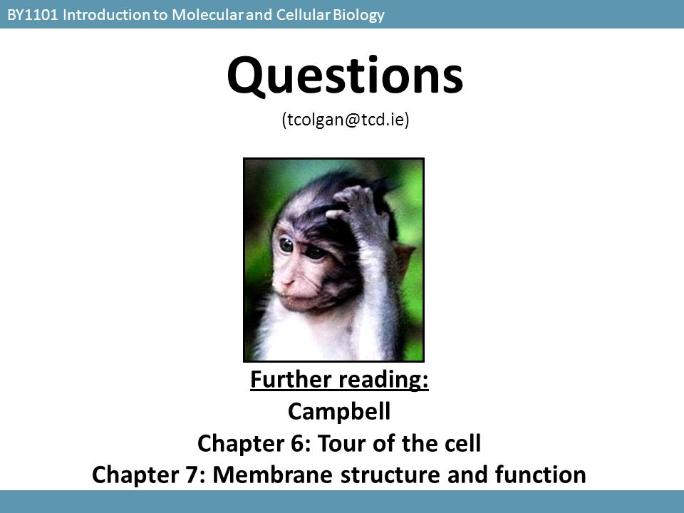 Chapter 6: Tour of the cell Chapter 7: Membrane structure and function