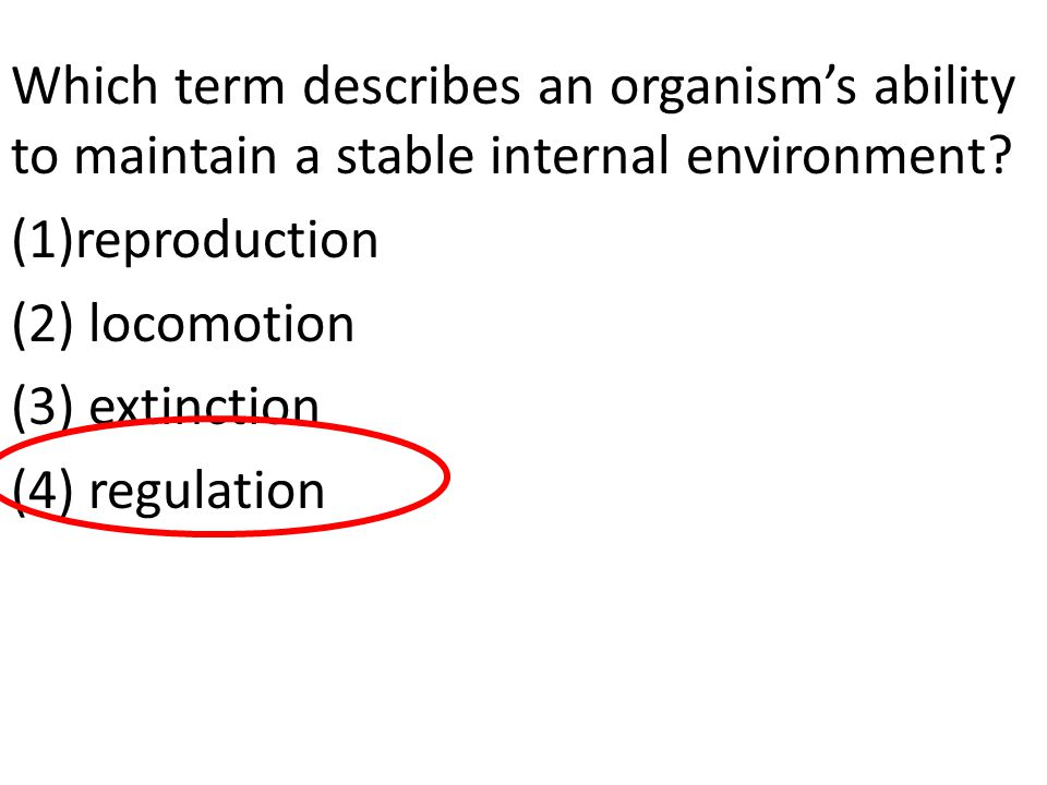 Which term describes an organism's ability to maintain a stable internal environment