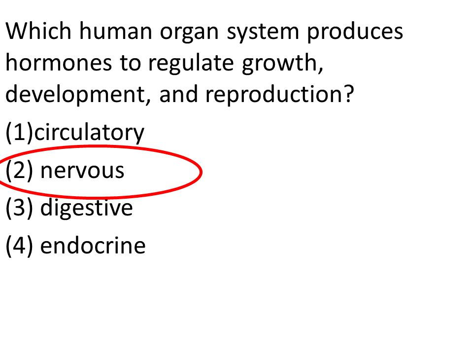 Which human organ system produces hormones to regulate growth, development, and reproduction
