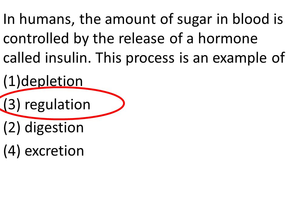 In humans, the amount of sugar in blood is controlled by the release of a hormone called insulin. This process is an example of