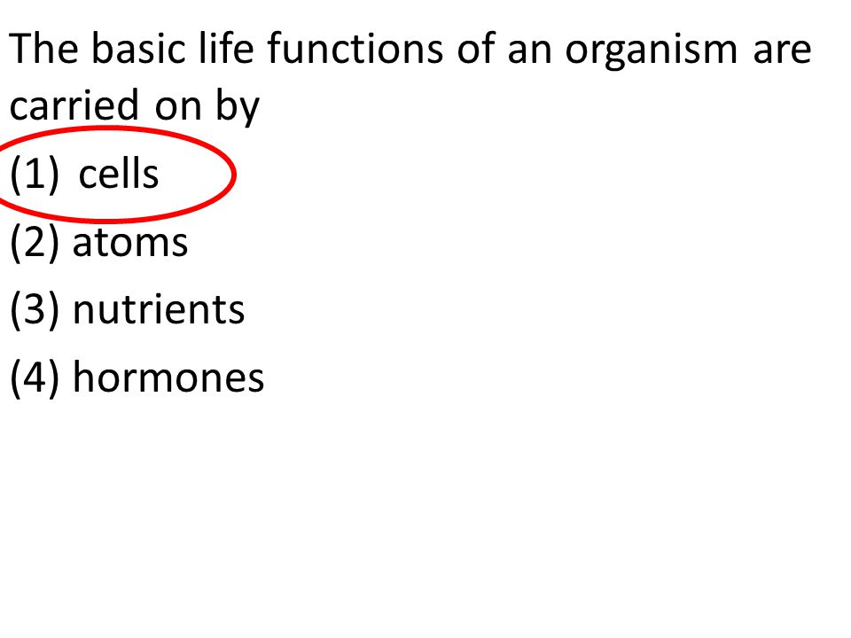 The basic life functions of an organism are carried on by