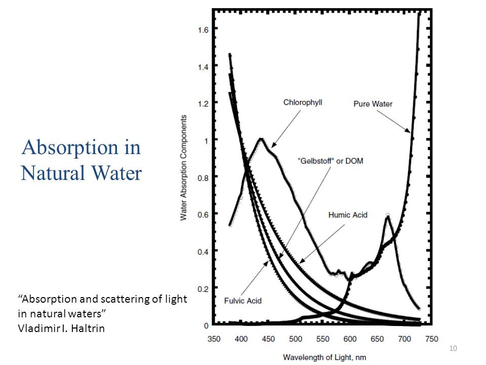 Absorption in Natural Water