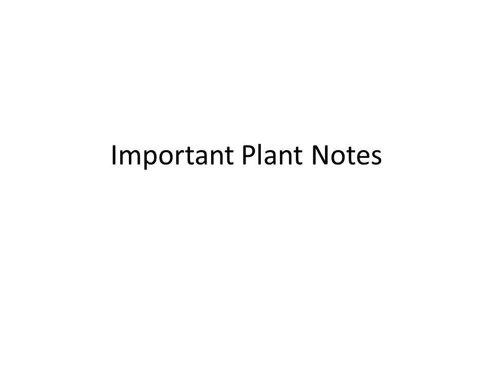 Important Plant Notes