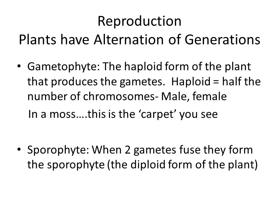Reproduction Plants have Alternation of Generations