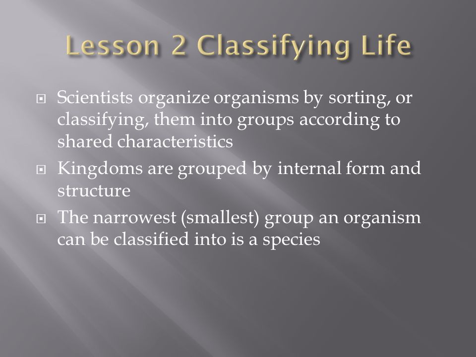 Lesson 2 Classifying Life