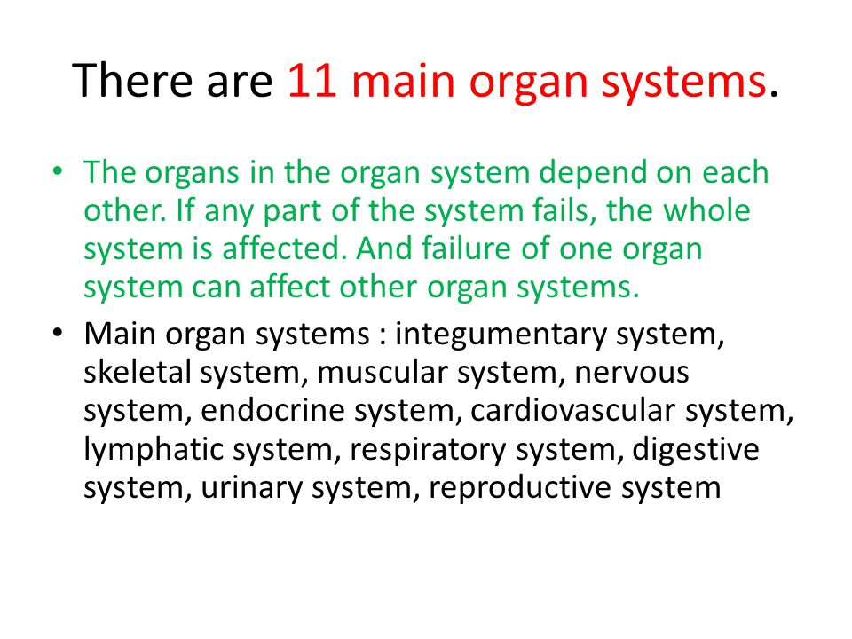 There are 11 main organ systems.