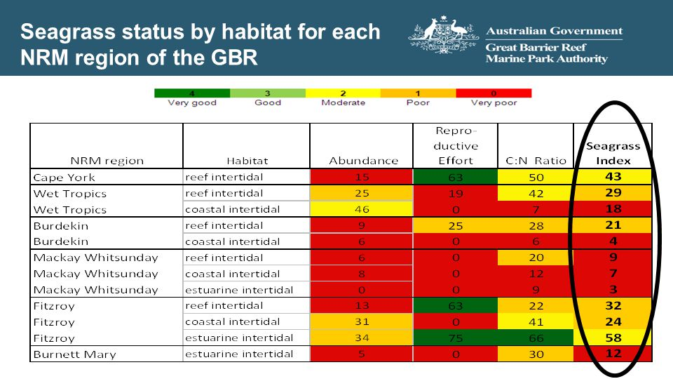 Seagrass status by habitat for each NRM region of the GBR