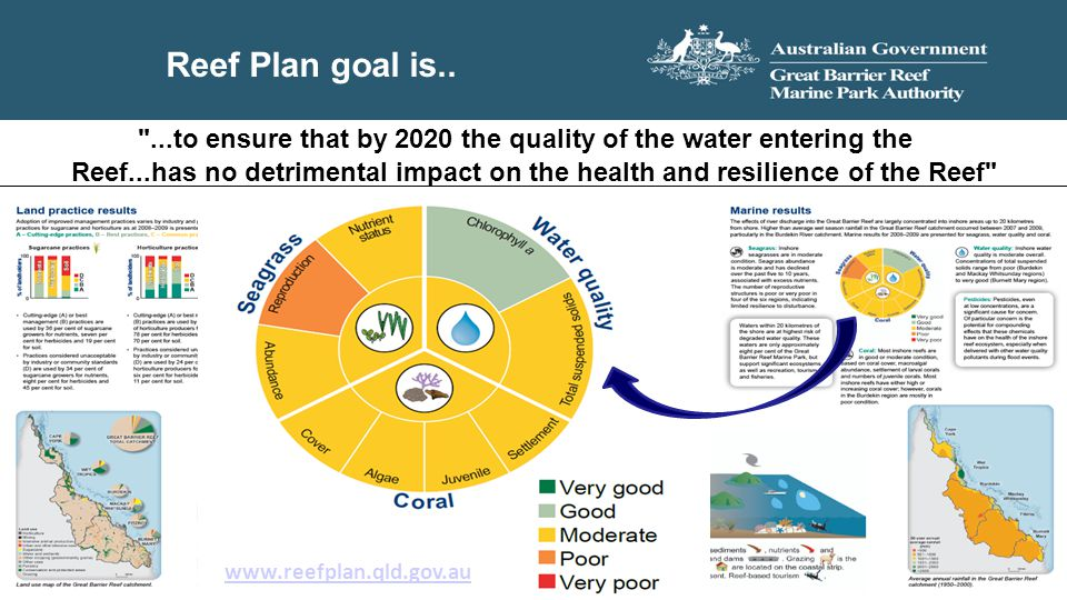 Reef Plan goal is..