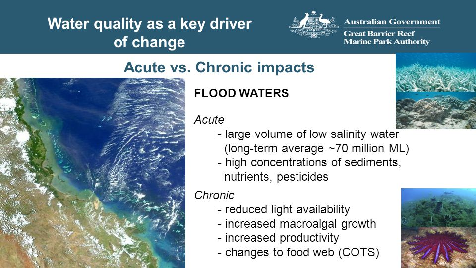 Water quality as a key driver of change