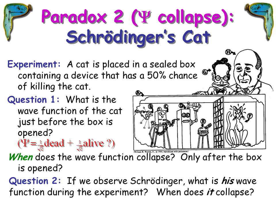 Paradox 2 (Y collapse): Schrödinger's Cat
