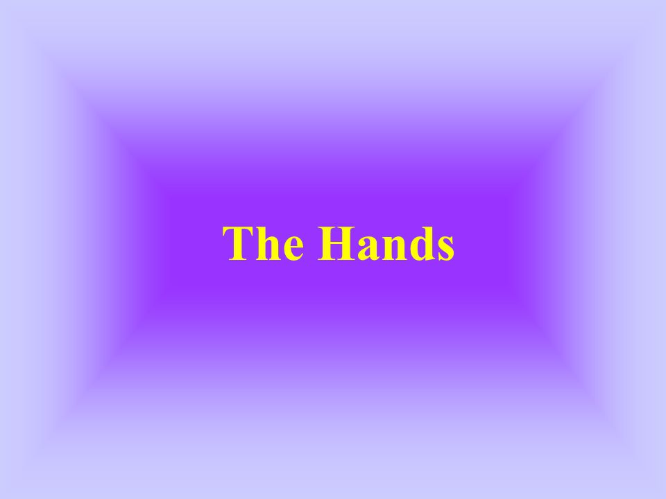 The Hands