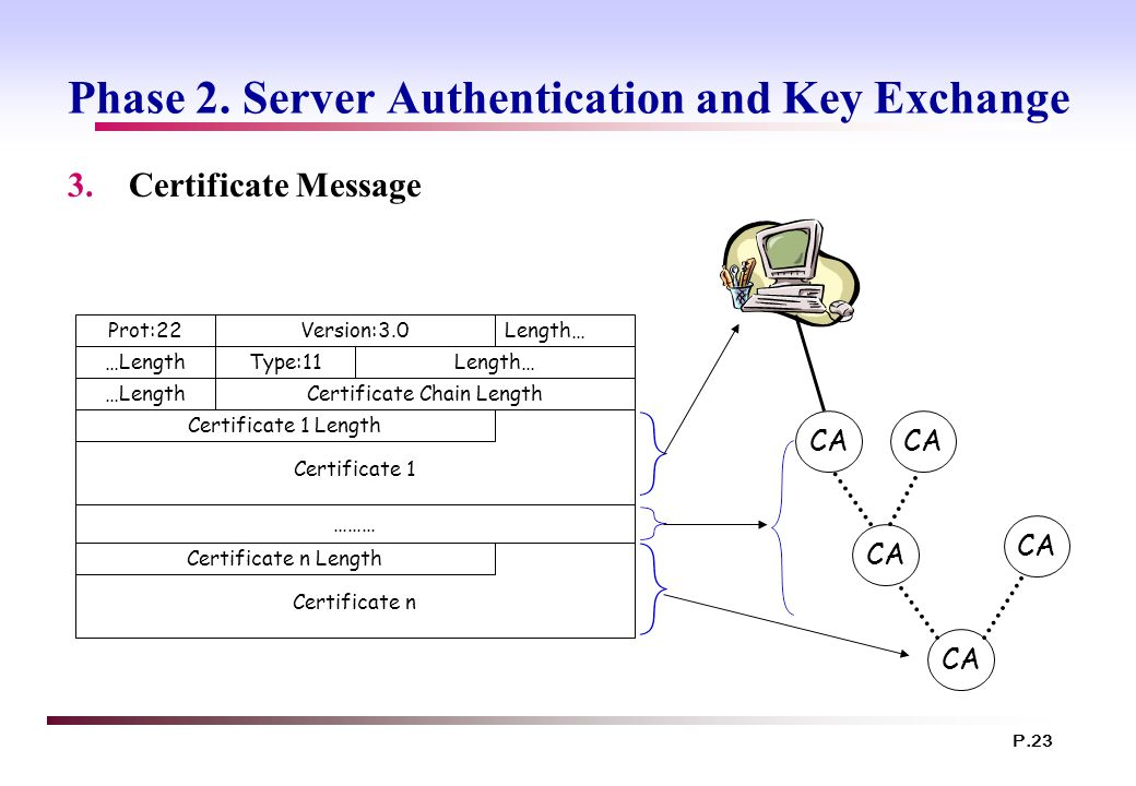 Phase 2. Server Authentication and Key Exchange