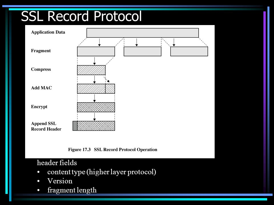 SSL Record Protocol header fields content type (higher layer protocol)