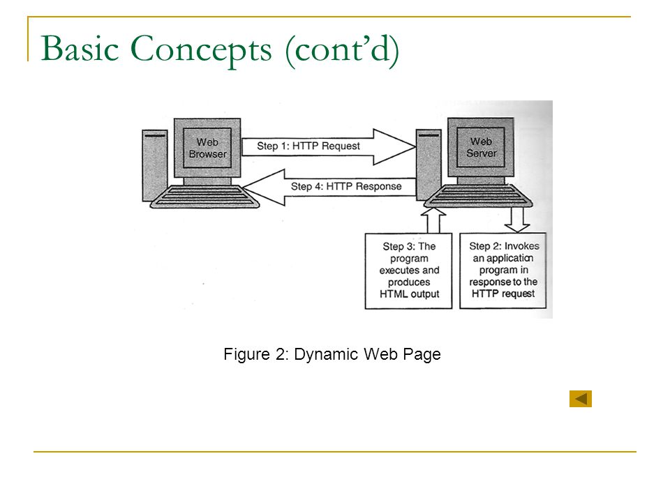 Basic Concepts (cont'd)