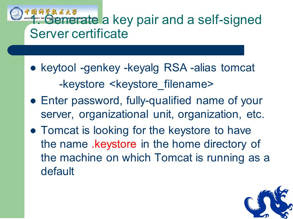 1. Generate a key pair and a self-signed Server certificate