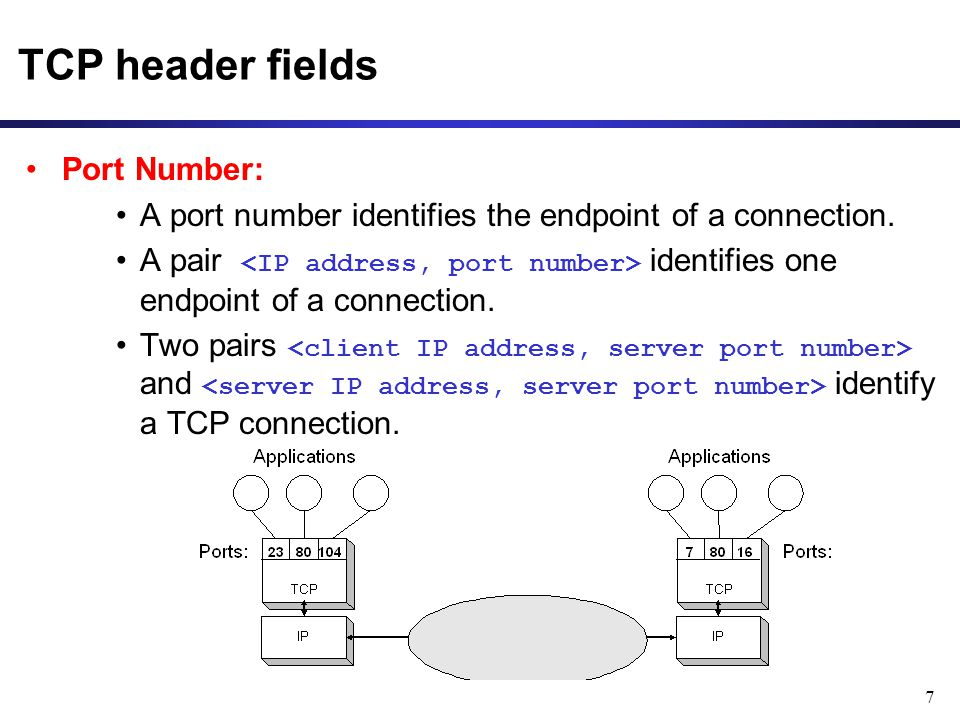 TCP header fields Port Number: