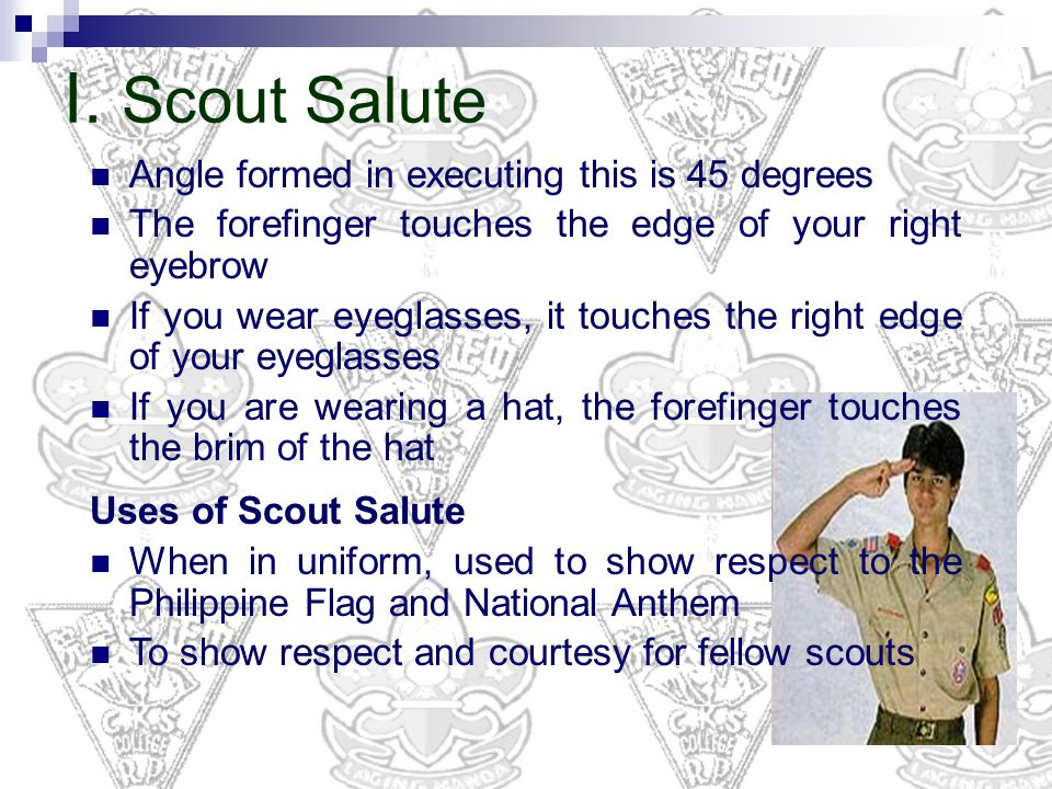 I. Scout Salute Angle formed in executing this is 45 degrees